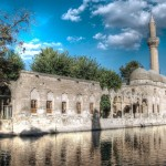 The Pool of Sacred Fish in Urfa
