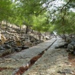 The Ancient Ruins of Priene
