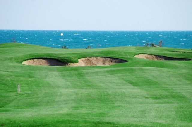 Tat international golf club
