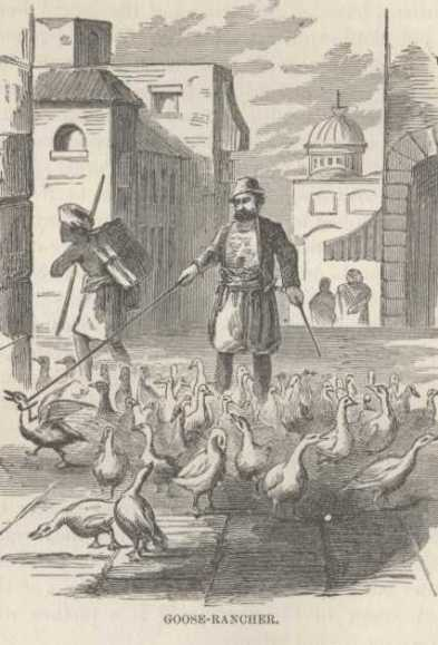 The goose seller