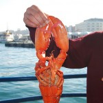 Popular Seafood Cuisine of Turkey